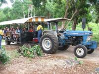 Prospect Plantation Tour