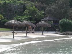 Mahogany Beach Ocho Rios