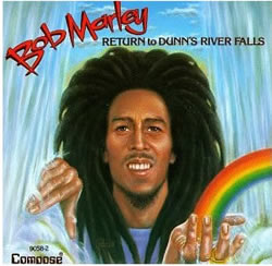 Bob Marley: Return to Dunn's River Falls