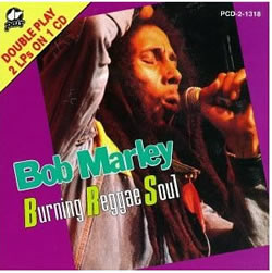 Bob Marley: The Burning Reggae Soul