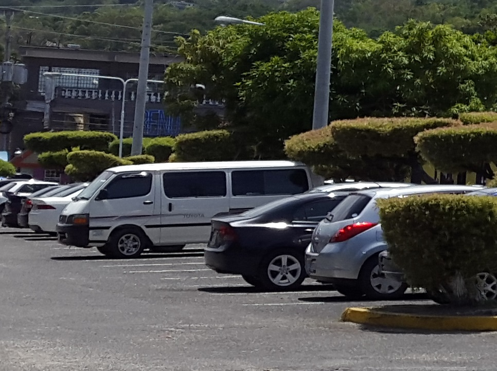Port Antonio airport transfer bus