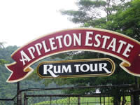 Appleton Estate Tour