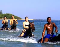Horseback Ride N Swim