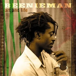 Beenie Man: Art and Life