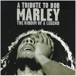 Bob Marley: Tribute to Bob Marley...The Riddim of a Legend