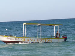 Negril Glass Bottom Boat